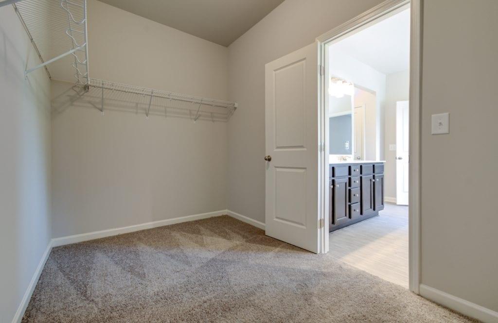 closet with carpet