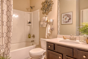 Arlington_II_By_Chafin_Communities_Gueest-Bath-on-Main
