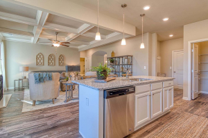 Arlington_II_By_Chafin_Communities_Kitchen-4
