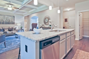 17-Arlington-II_ChafinCommunities-Kitchen