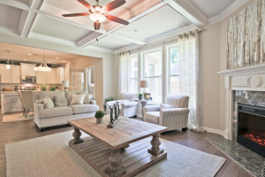 17-Carlson-Model-Mulbbery-Park-by-Chafin-Communiteis-Great-Room