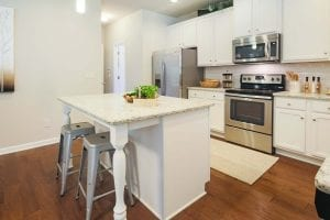 18-Carlson-Model-Mulbbery-Park-by-Chafin-Communiteis-Kitchen