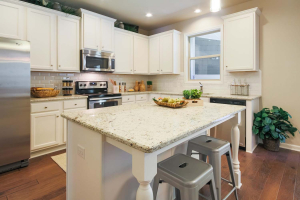 19-Carlson-Model-Mulbbery-Park-by-Chafin-Communiteis-Kitchen