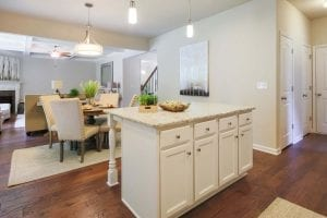 20-Carlson-Model-Mulbbery-Park-by-Chafin-Communiteis-Kitchen