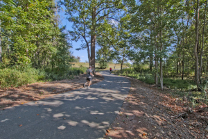 Parkside-at-Mulberry-Park-by-Chafin-Communities-Trail-Little-Mulberry-Park