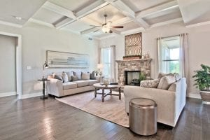 Turnbridge-by-Chafin-Communities-Model-at-Parkside-at-Mulberry-Model-at-Great-Room-1