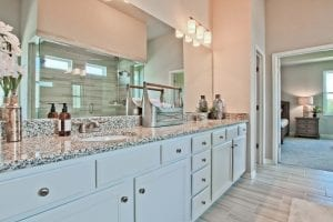 Turnbridge-by-Chafin-Communities-Model-at-Parkside-at-Mulberry-Owners-Bath-3