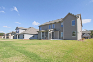 Turnbridge-by-Chafin-Communities-Model-at-Parkside-at-Mulberry-Rear-View