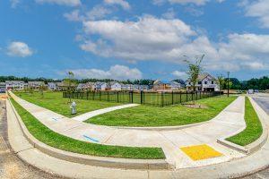 Fenced Dog Park